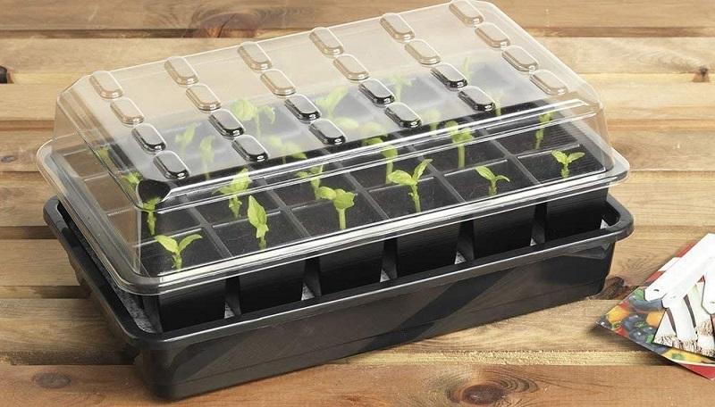 Test - Britten & James® Kit de démarrage de semences Sure Start. Démarrez parfaitement 24 plantes avec ce système de propagation de...