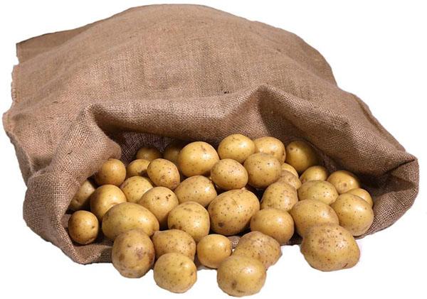 Test - Predominio Premium Lot de 3 grands sacs en toile de jute 105 cm x 60 cm 100 % écologiques